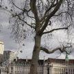 IMG_0253_London